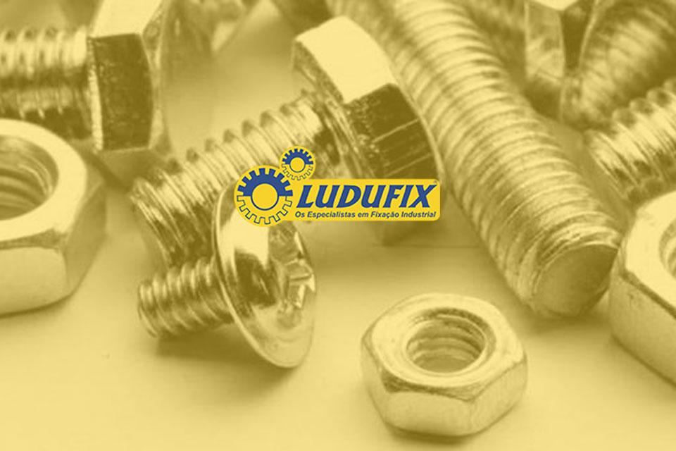 Ludufix
